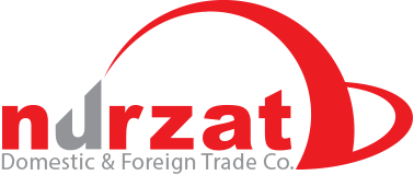 Nurzat Domestic & Foreign Trade Logo